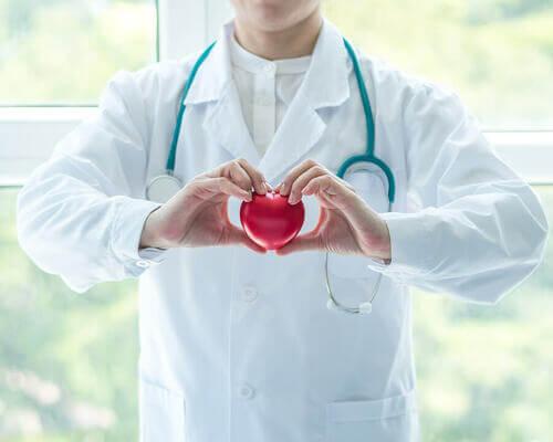Medico che tiene un cuore di plastica in mano.