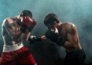 Incontro di boxe.