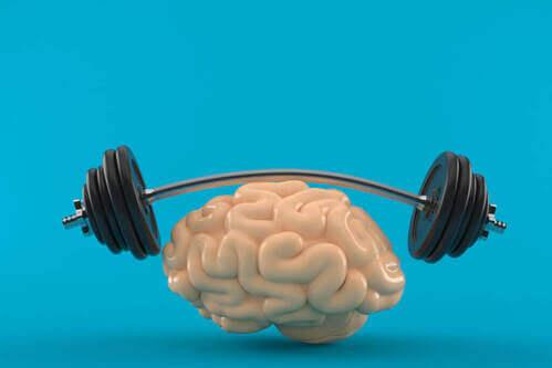 La connessione mente-muscolo è importante?