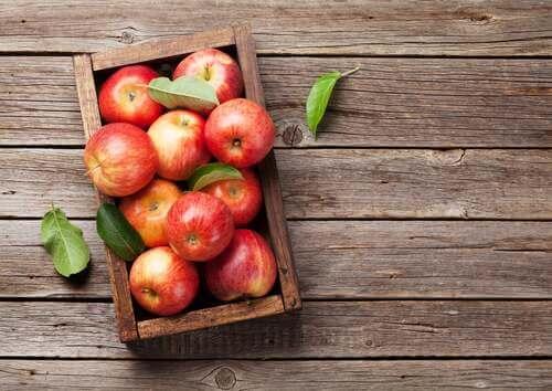 Le mele proteggono la flora intestinale.