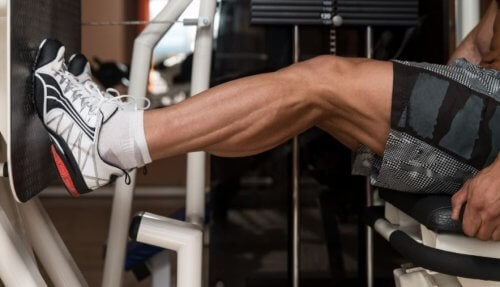 レッグプレスマシンでのカーフレイズ 脚の筋肉