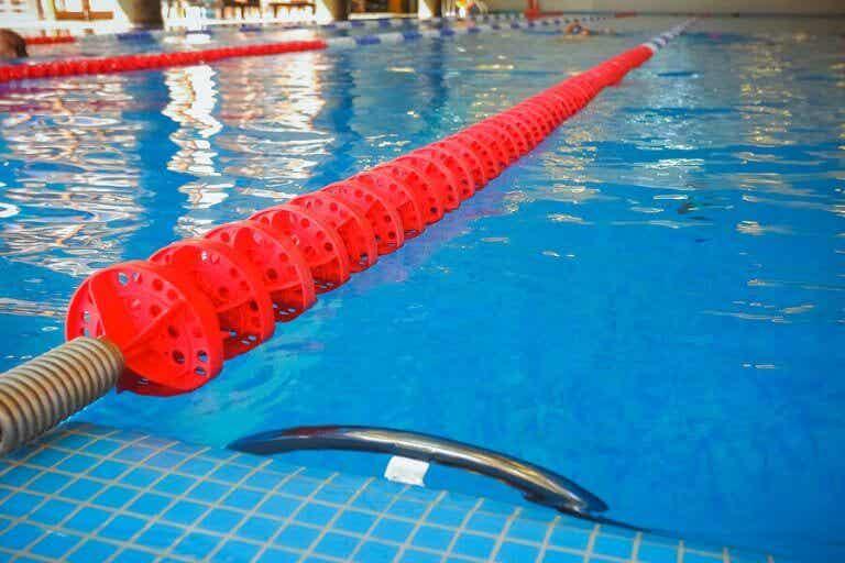 競泳のルールと使用するプールの基準 スペインの場合