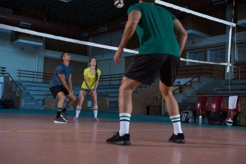 スペインの様々なスポーツ連盟について