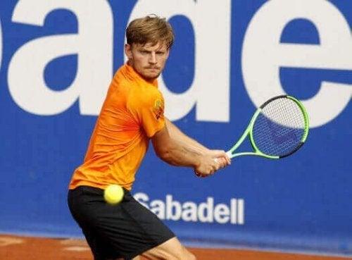 名テニスプレイヤー ダビド・ゴファン
