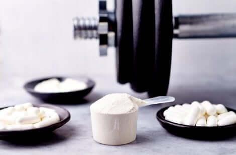 タンパク質 サプリ