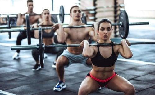 초고강도 크로스핏 운동 프로그램 6가지