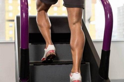 스테퍼 운동기구의 사용법 및 이점