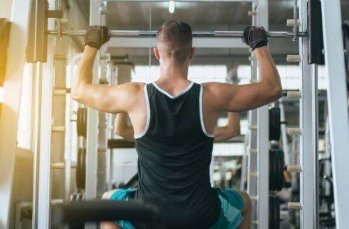 푸시업 외에 등 근육 단련에 좋은 운동들