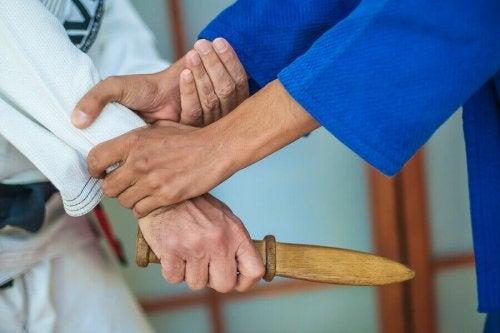 무술에서 사용하는 날카로운 무기에 관한 스페인 법률