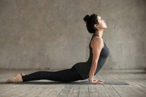 당뇨 환자의 건강한 운동 가이드