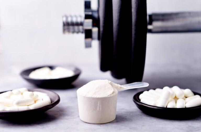 단백질 다량 보충제