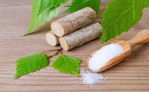 자일리톨이 주성분인 자작나무 설탕에 대해 알아보자