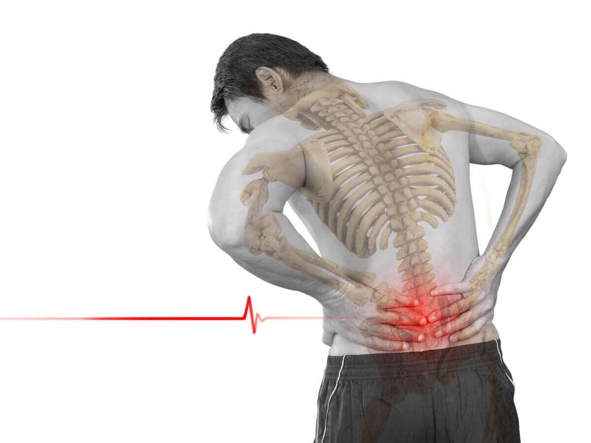 요추 과전만 근육
