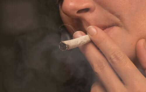 마리화나 소비가 인체에 어떠한 영향을 미칠까?