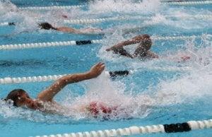 Personer svømmer crawl i svømmebasseng.