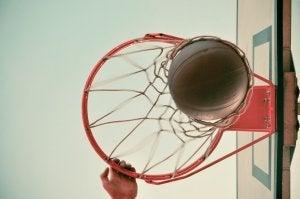 Basketball i basketballkurv.