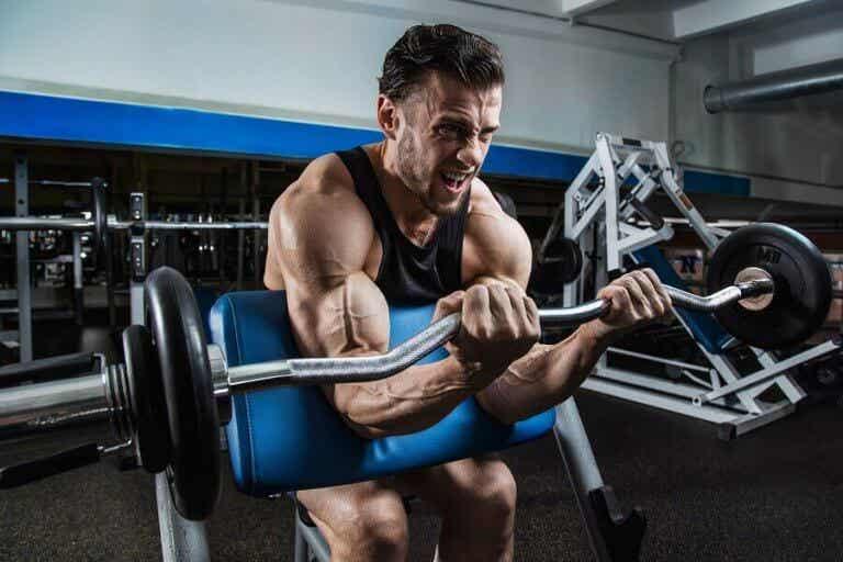 Biceps-øvelser å inkludere i treningsrutinen din