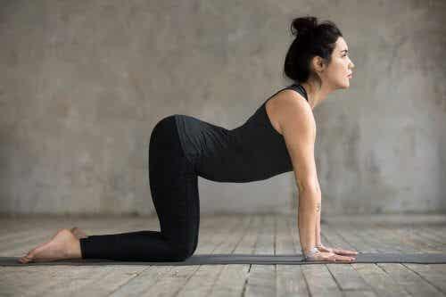 4 øvelser for å lindre smerter i korsryggen