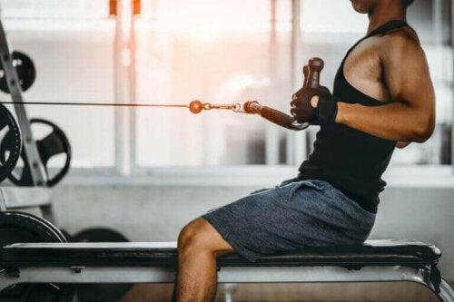 trene ryggmusklene