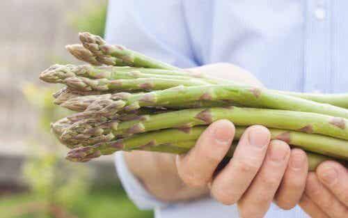 Deilige oppskrifter med vill asparges