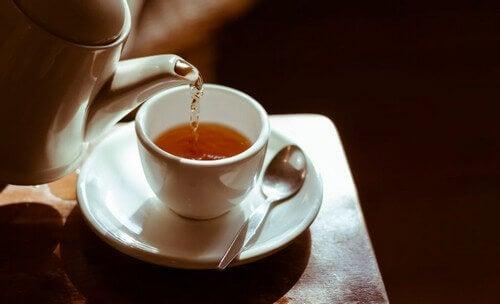 Forskjellige typer te og fordelene med dem