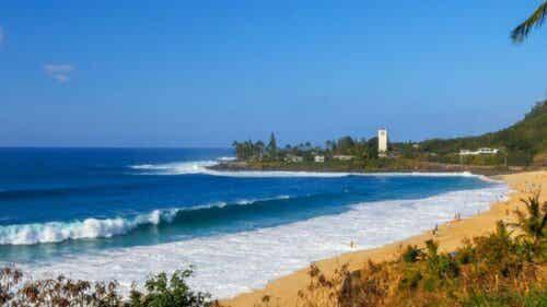 De 9 beste strendene å surfe på i verden