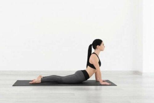 Yoga-strekk.