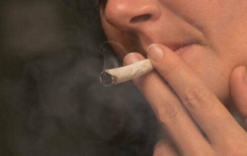 Effektene som marihuana har på kroppen