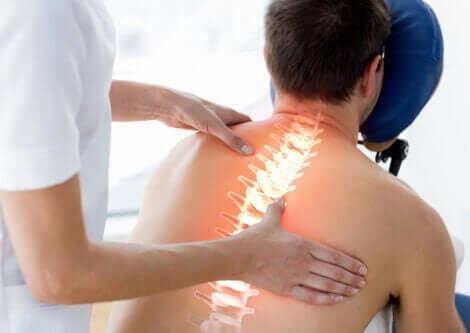 En fysioterapeut som arbeider på pasientens rygg.