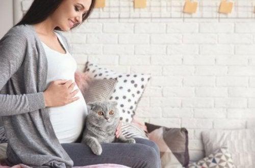 Het effect van toxoplasmose tijdens de zwangerschap