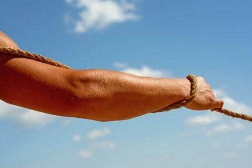 Spier- en neurologische factoren voor kracht