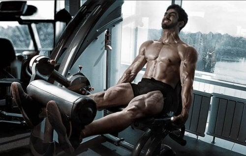 Quadriceps trainen