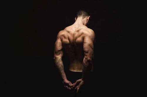 De trapezius: oefeningen om te versterken en te strekken