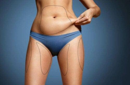 Hoe lichaamsvet te verbranden en spiermassa te behouden