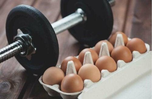 8 voedingsmiddelen om meer spiermassa op te bouwen