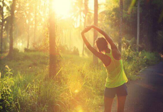 Kobieta rozciągająca się w lesie w promieniach słońca - jak prowadzić lepsze życie
