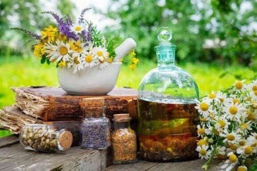 Herbata rumiankowa - 8 powodów dla których warto ją pić