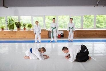 aikido japońskie sztuki walki