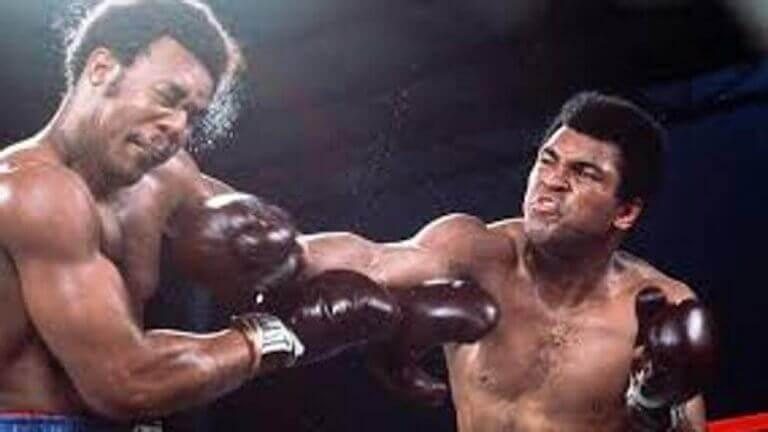 sporty walki boks