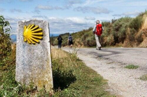 Camino de Stantiago - 5 wskazówek, jak ją przejść