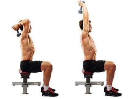 Pionowe wyprostowanie tricepsa z hantlami polega na wzięciu hantli obiema rękami za szyję i wyciągnięcie ionowo.