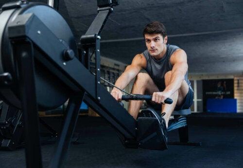 ćwiczenia na zwiększenie masy mięśniowej