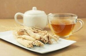 Żeń-szeń i filiżanka herbaty