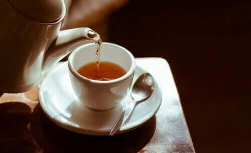 Herbata – poznaj jej rodzaje i właściwości