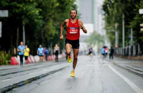 Odżywianie przed maratonem – ważne wskazówki