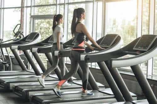 HIIT i LISS: różne rodzaje treningu kardio