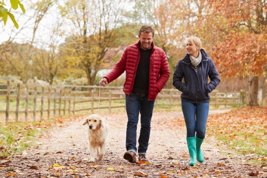 Casal caminhando no outono com seu cachorro