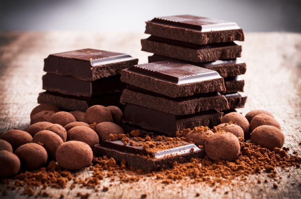 Tabletes de chocolate e cacau em pó