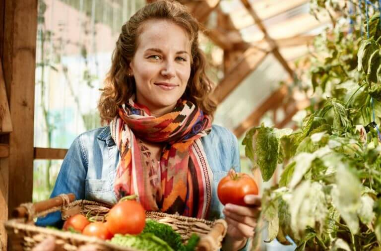 Mulher colhendo tomates