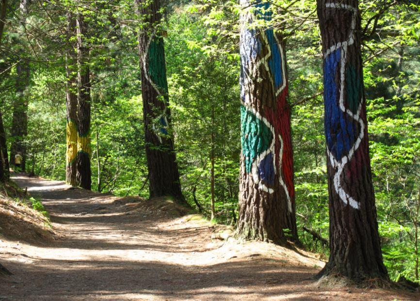Árvores pintadas